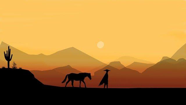 夕日を歩く馬
